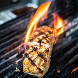 Rustic Salmon grilling